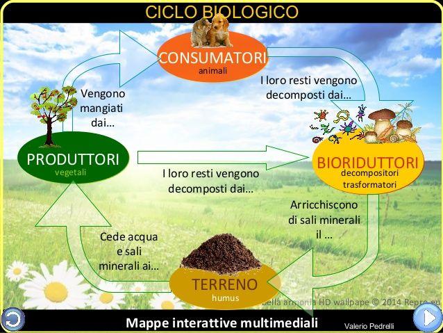 Ecosistema: e-book ipermediale nella nuvola