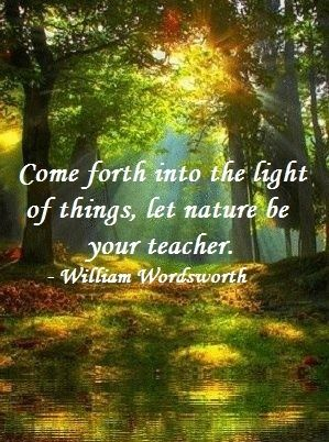 "nature quote | ""Come forth into the light of things, let nature be your teacher."" - William Wordsworth"