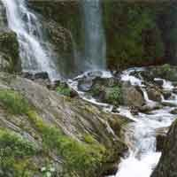 Manali tour package from Pune