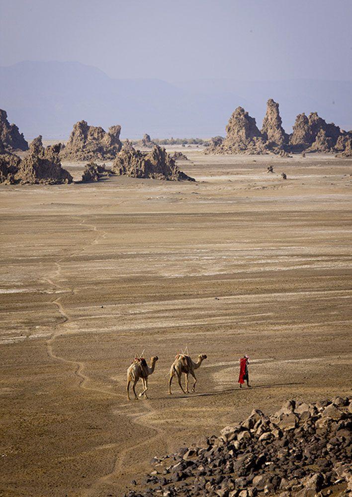Animals and Humans | Eric Lafforgue Photography - Djibouti