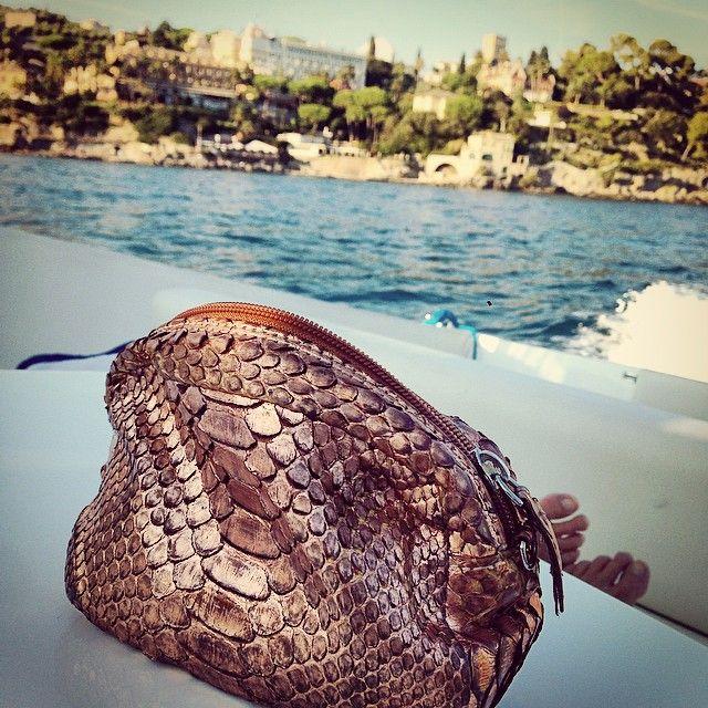 I lost my python bag in Portofino