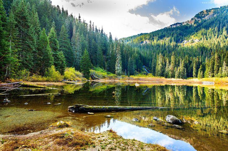 Jezioro, Las, Wzgórza