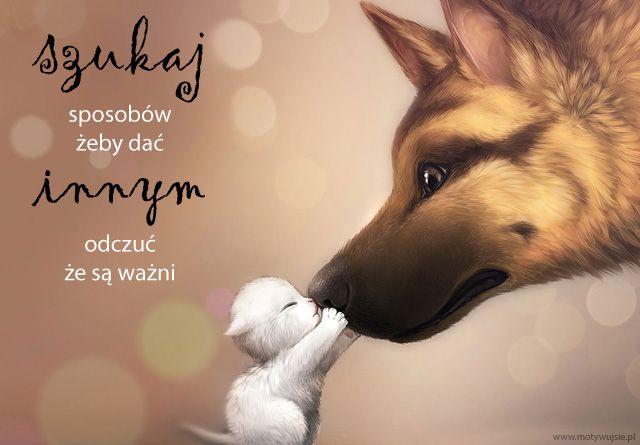 Szukaj sposobów… | www.MotywujSie.pl