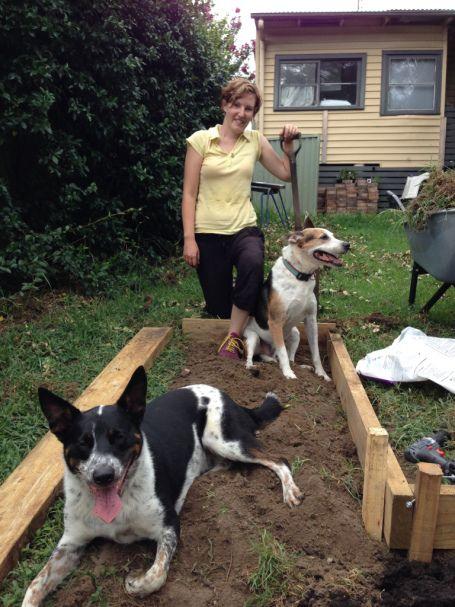 Build your own garden- Burrowbee