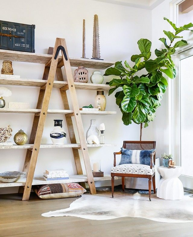 Living space with a full wall of shelves, and a wood armchair
