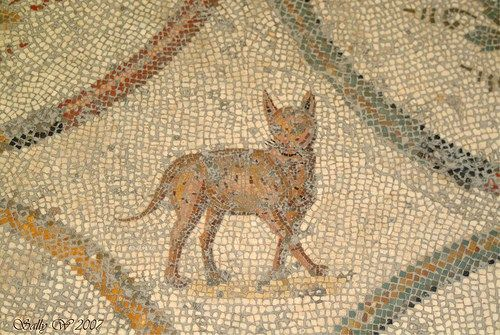 Detail of a mosaic from the House of the Faun, Pompeii « Mosaic Art Source Colorful Cat Mosaic - National museum of Rome - mharrsch Cat on Mosaic - johnthurm A cat sits on a mosaic in the ruins of ...