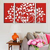 Stretched Canvas Print Art Botanical Shadow o... – AUD $ 97.04
