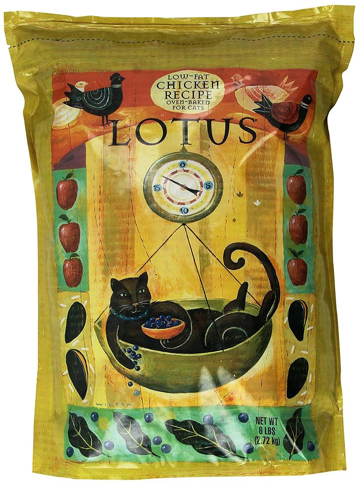 Lotus Senior Cat Food ** Don't get left behind, see this great  product(This is an affiliate link and I receive a commission for the sales)  : Cat Food