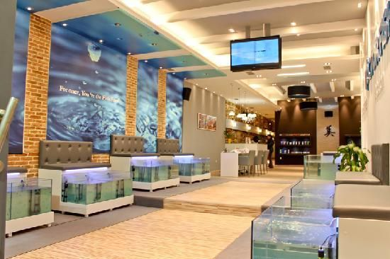 Doctor Fish Athens