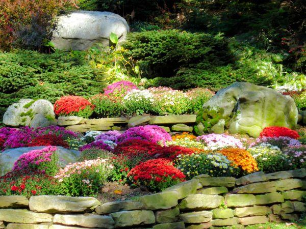 Fall Landscape Flower Beds Pinterest