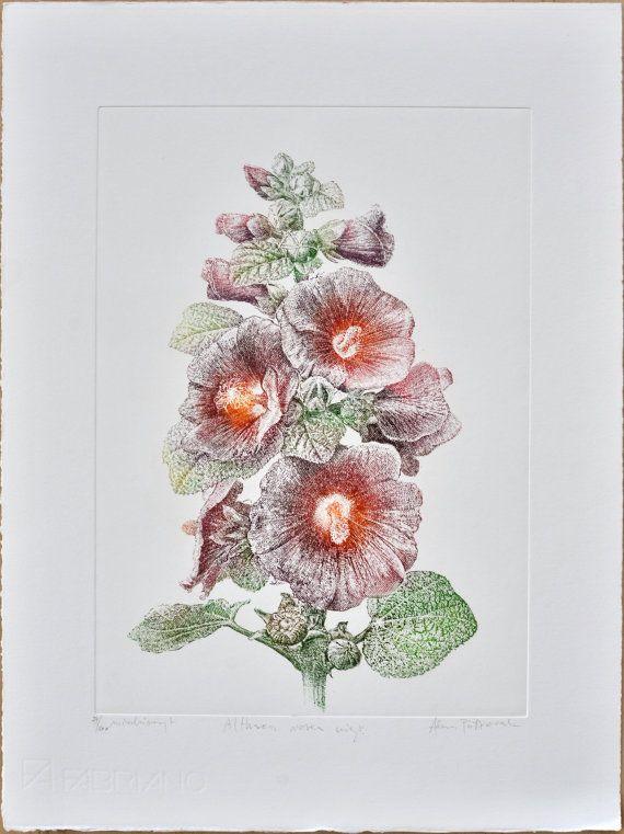 Alcea rosea  hollyhock  handmade copper-plate by AtelierPoltorak