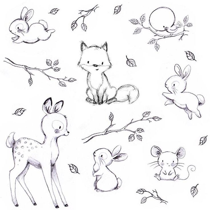 Consulta esta foto de instagram de aidazamorailustracion • 337 me gusta woodlands animals pinterest doodles drawings and journal