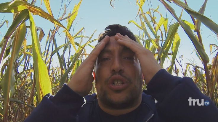 I love the impractical Jokers. This video of Sal's punishment through a corn maze is very funny. I laugh so hard every time I watch it. :)