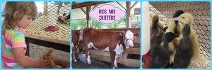 Toddler Fun at the Howard County Fair! - Sunshine Whispers http://www.sunshinewhispers.com/2014/08/toddler-fun-howard-county-fair/