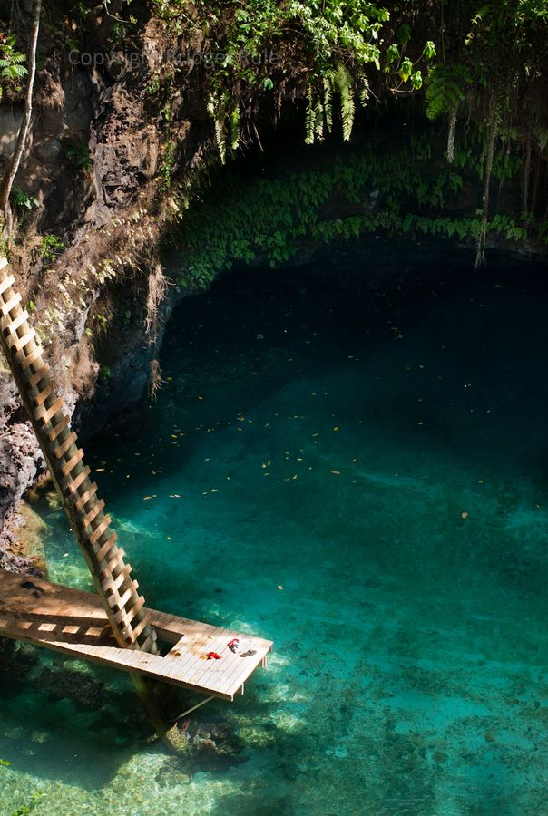 Dive into the warm waters in Upolu, Samoa.