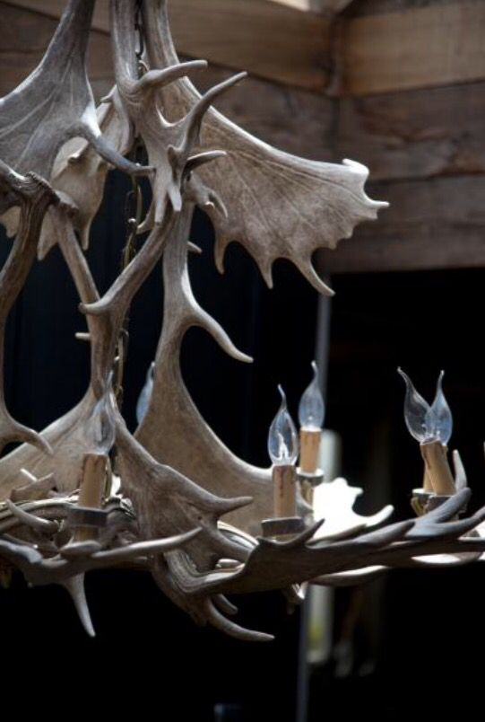 """This 'wild' chandelier is from our feature """"Wintery Manners"""""""