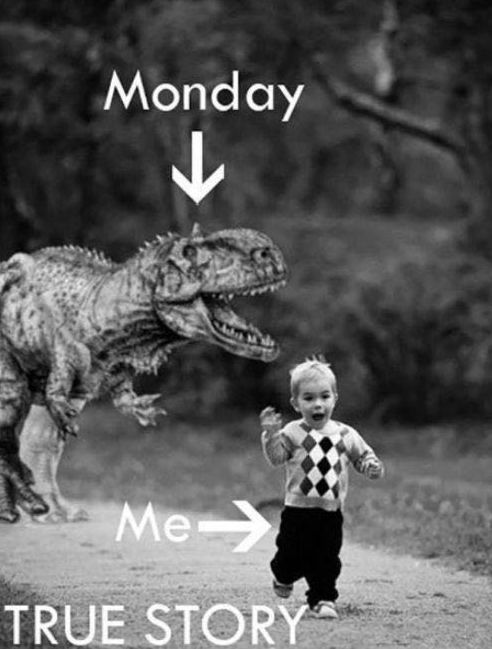 Don't let the rumor of a typical Monday keep you from creating something spectacular! Let's rise up out of bed, take the day by it's sharp teeth, and make the most out of another day. Each of us is alive and well! (monday attachment is picture for this)  credited source: Good Morning Quote