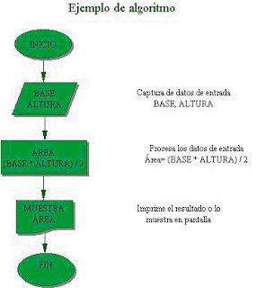 CONCEPTOS BASICOS DE PROGRAMACION PARA PRINCIPIANTES: ALGORITMO