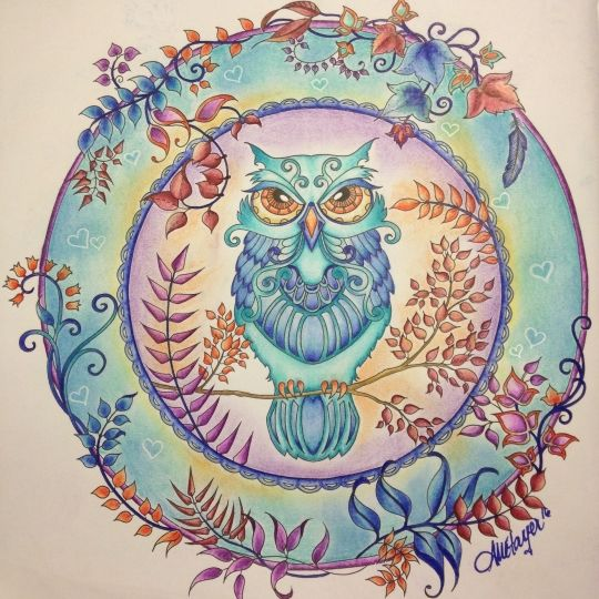 45 Best Coloring Johanna Basford Owl Images On Pinterest