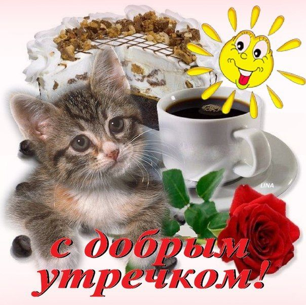 С добрым утром оля картинки красивые