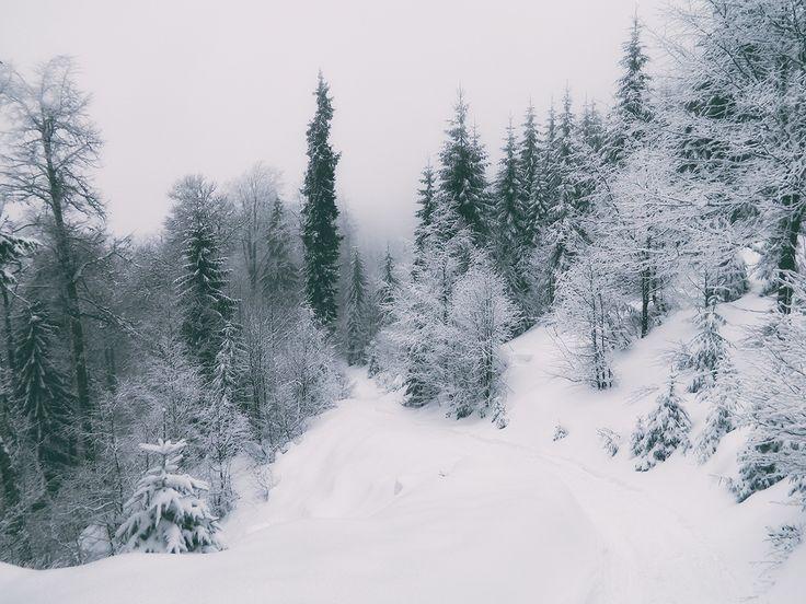Stâna de Vale, iarna | Bihor in imagini