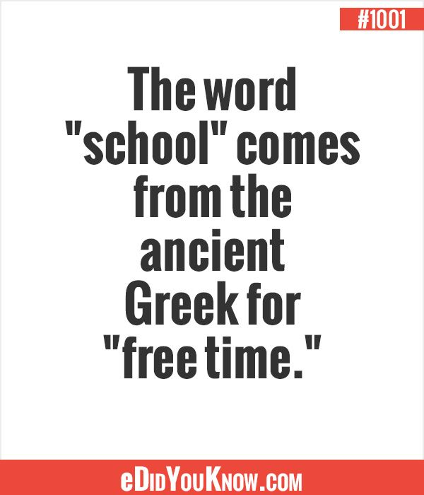 the word �school� comes from the ancient greek for �free