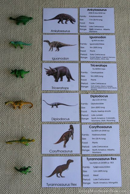 Dinosaur Layout by Deb Chitwood, via Flickr