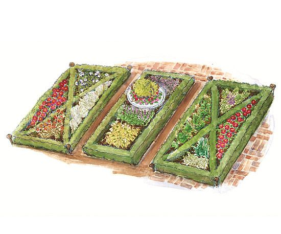 78 images about knot gardens and topiaries on pinterest for Herb knot garden designs