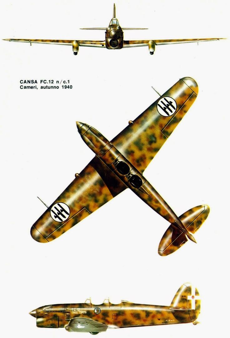 Italian Aircraft of WWII: Attack