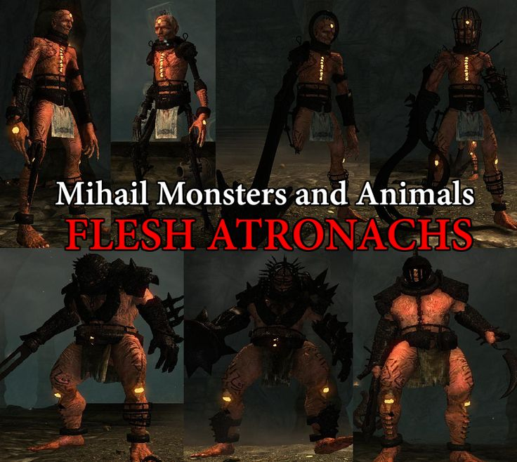 Flesh Atronachs- Mihail Monsters and Animals (SSE) (mihail immersive add-ons - oblivion - shivering isles) at Skyrim Special Edition Nexus - Mods and Community