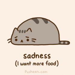 Cat's sadness