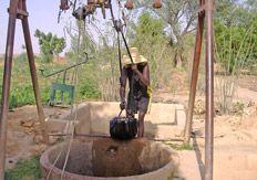 Sinds 2005 ondersteunt De Groot en Slot samen met Agriterra een ontwikkelingsproject in het Afrikaanse land Niger. Coöperaties van boeren worden daar geholpen om hun eigen uienzaad te telen. Jaarlijks worden zo'n 10.000 hectare uien geteeld waarvan ongeveer 65% wordt geëxporteerd. In één van de armste landen ter wereld is dit een grote bron van inkomsten. De Groot en Slot heeft zich garant gesteld om dit project minstens 10 jaar te begeleiden en kennis over te dragen.