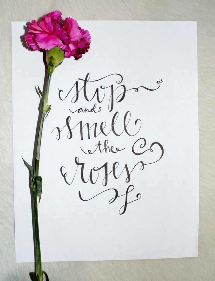 Best images about wedding invitation on pinterest