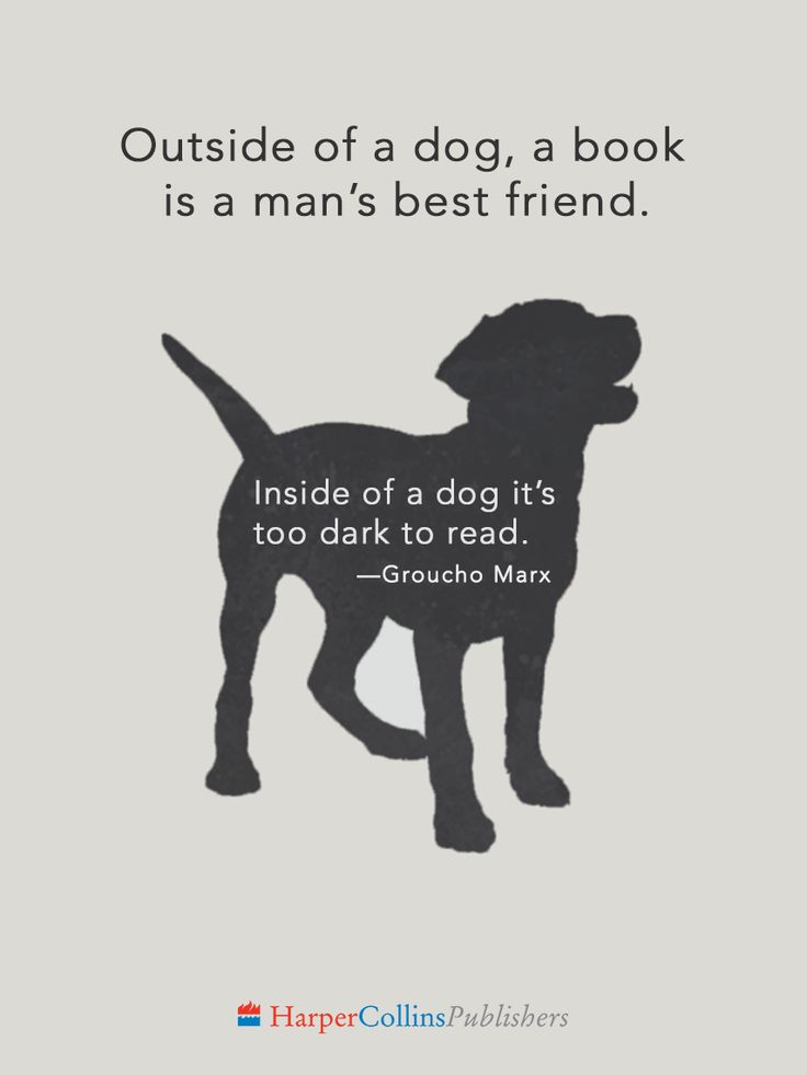 """""""Outside of a dog, a book is a man's best friend. Inside of a dog it's too dark to read.""""  —Groucho Marx"""