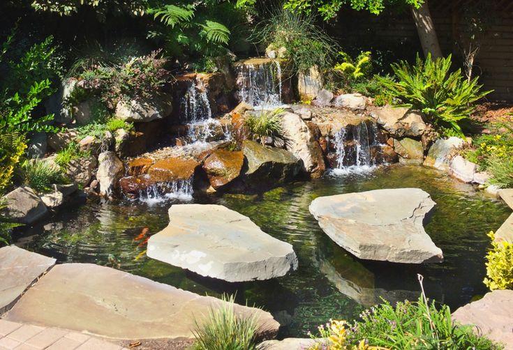 9 best pond construction images on pinterest pond for Square koi pond