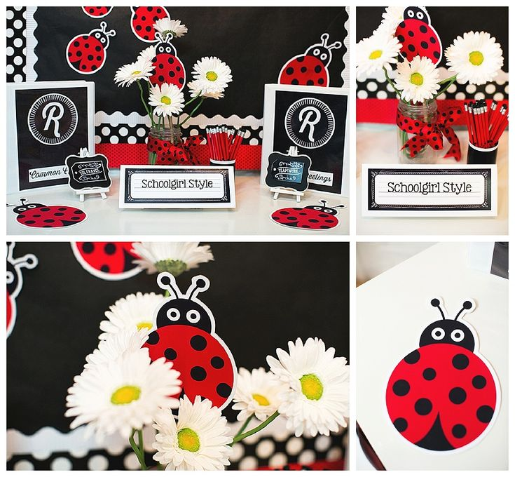 Ladybug Classroom Decor ~ Best images about ladybugs on pinterest