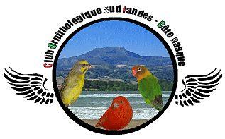 http://club-ornitho-slcb.wifeo.com/