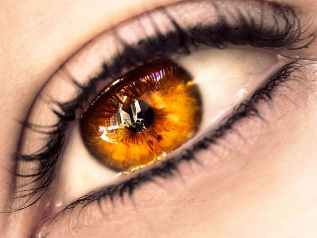 I got: Golden Eyes! What Should Your Fantasy Eye Color Really Be? I'm going to get hunted by the Supernatural fandom