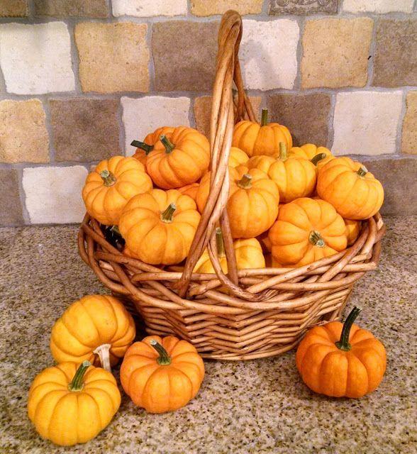 Must Run in the Family: 21 Mini Pumpkin Games