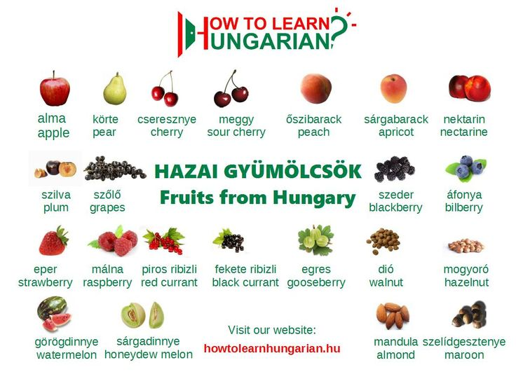 Hungarian vocabulary for beginners: the fruits