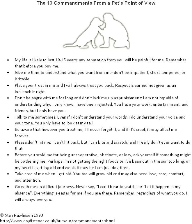 "The 10 Commandments From a Pet's Point of View - Stan Rawlinson Dog Behaviourist and Obedience Trainer. Author of the ""Ten Commandments For Pets"" You can visit his website and articles at http://www.doglistener.co.uk/ - See more at: http://www.doglistener.co.uk/humour/commandments.shtml#sthash.ArW6tMtX.dpuf"