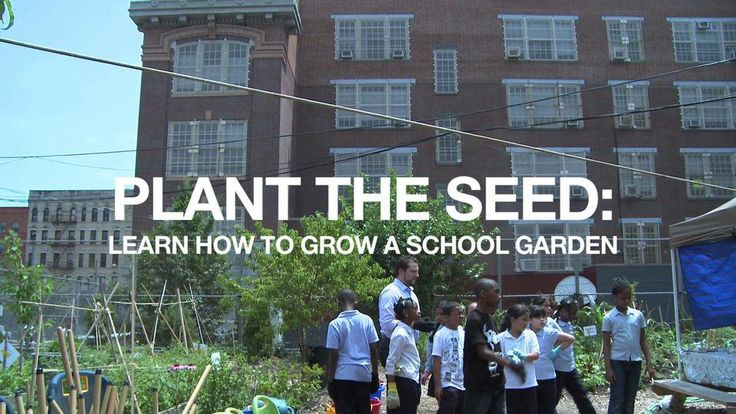 15 Best Images About Urban Farms And Education On Pinterest Nyc Farm Projects And Agriculture