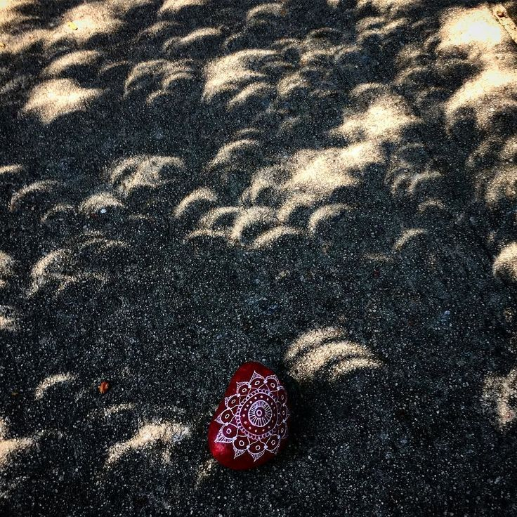 beautiful sunbeam trough the leaves #eclipse. We left this kindnessrock to inspire another human being to make someone else feel special. Practice #intentionalkindness 471