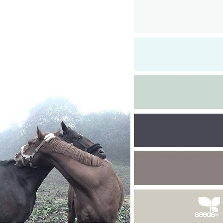today's inspiration image for { color love } is by @diana_lovring ... isn't Di's photo absolute perfection?! ... it is everything ... thank you, Di, for another *incredible* #SeedsColor image share!