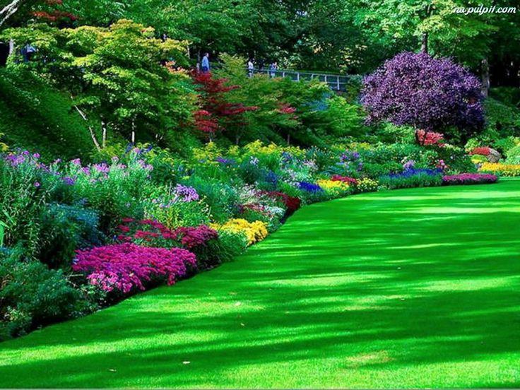 Kwiaty, Park, Trawa