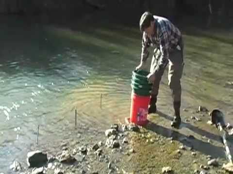 How To Find Gold With Basic Tools  Gold Prospecting Georgia Gold Prospector Basics