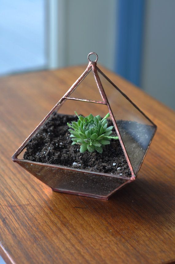 Air Terrarium Kit, small pyramid top terrarium to hang or sit, copper or silver color