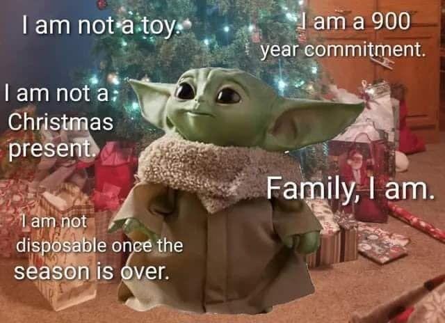 Pin By Sarah Buikema On My Funnies Star Wars Memes Yoda Funny Yoda Meme