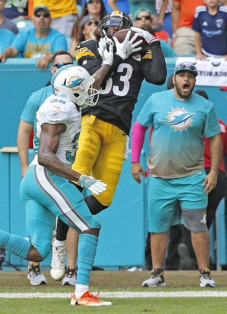 Steelers vs. Dolphins:     October 16, 2016  -  30-15, Dolphins  -     Pittsburgh Steelers wide receiver Cobi Hamilton (83) scores over Miami Dolphins defensive back Chimdi Chekwa (38) as the Miami Dolphins host the Pittsburg Steelers at Hard Rock Stadium on Sunday, October 16, 2016.