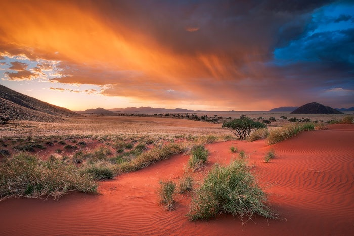 Mark is an amazing photographer and a friend...check out this mind-blowing image and the story behind it from a recent trip to Namibia...